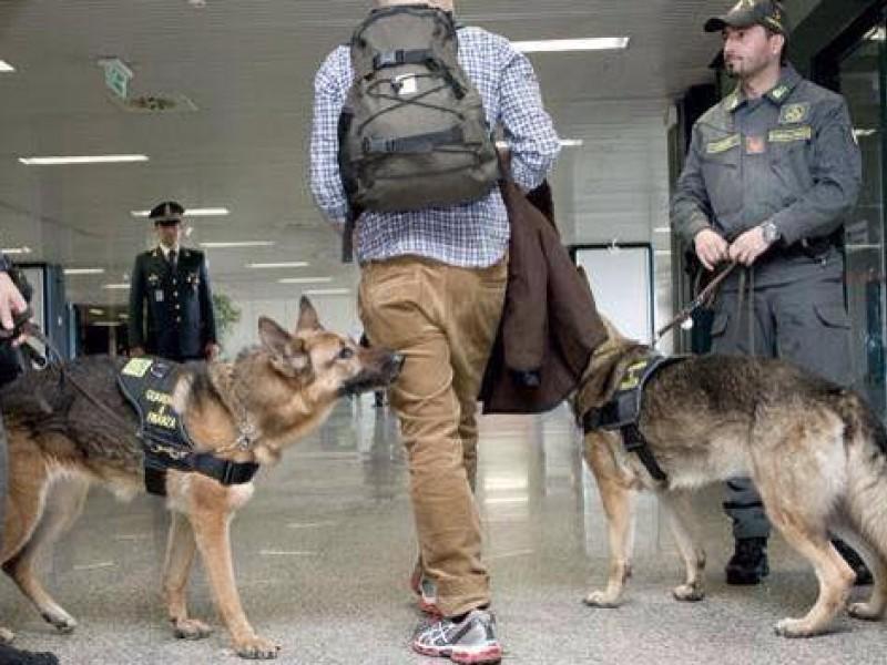 """Torinese trovato all'aeroporto con foglie di coca in valigia: """"Le uso per le tisane"""""""
