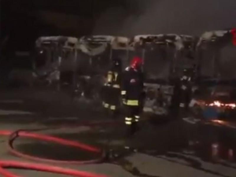 """Torino, brucia 7 autobus di linea: """"Non mi lasciavano salire senza biglietto"""""""
